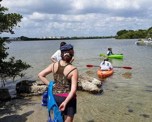 Island Cleanup