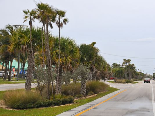 Ocean Beach blvd pic Photo: MALCOLM DENEMARK/FLORIDA TODAY